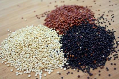what-is-quinoa-1024x683.jpg